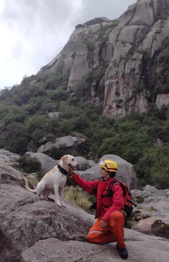 Perro de búsqueda en el Cerro Champaquí 09