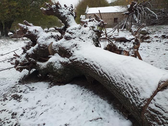 Nieve en el Champaqui 06