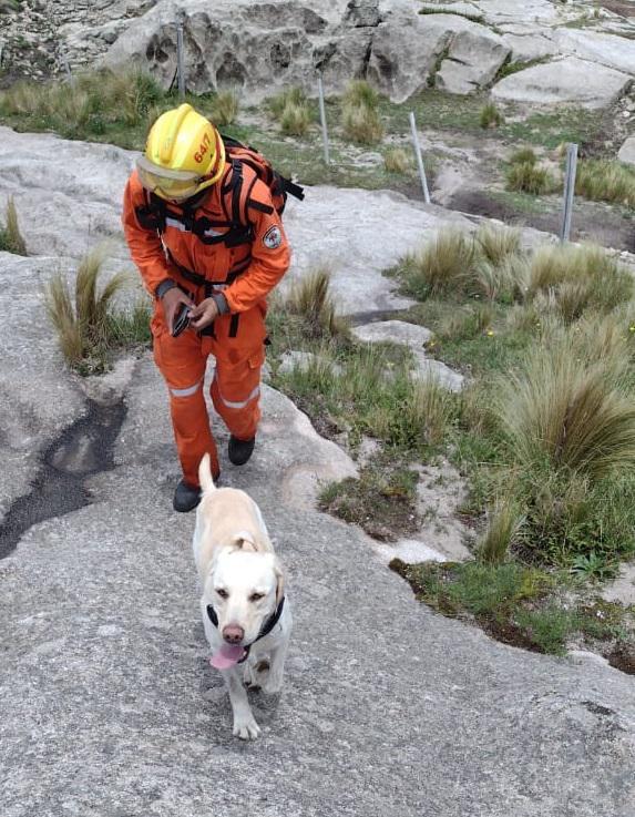 Perro de búsqueda en el Cerro Champaquí 07