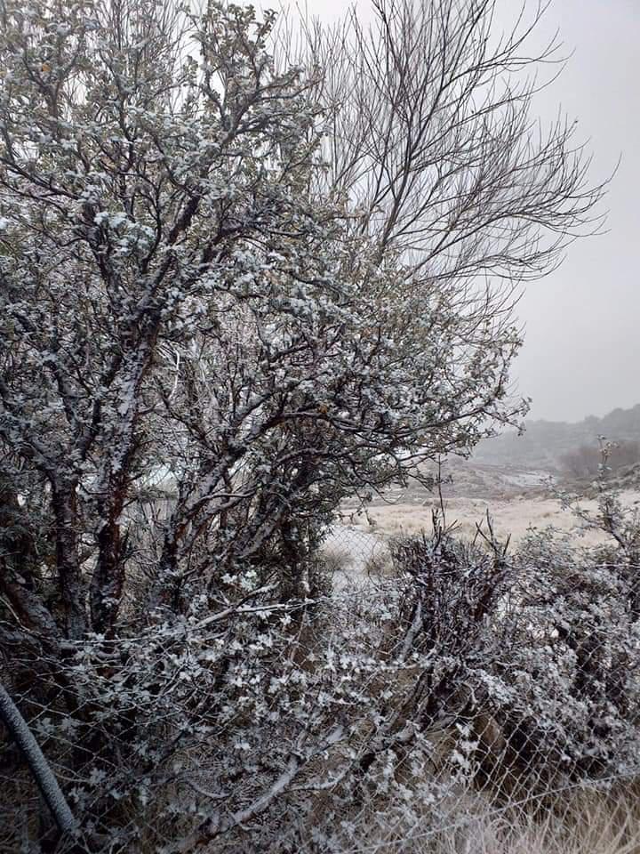 nieve en puestos del champaqui 1