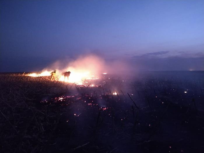 Incendio en Berrotaran 03
