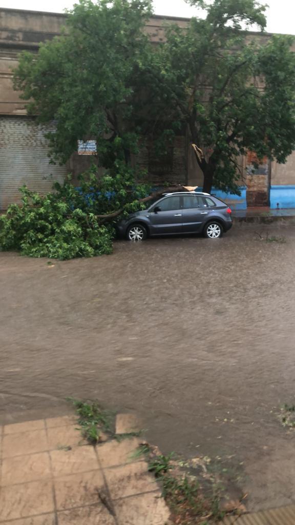 tormenta en Jovita