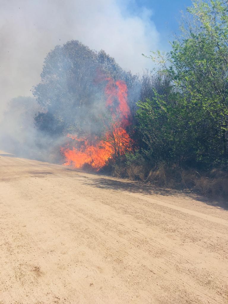 Incendio Alpa Corral 2