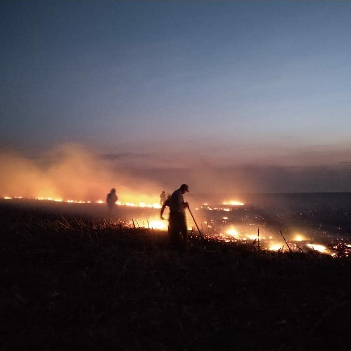 Incendio en Berrotaran 05