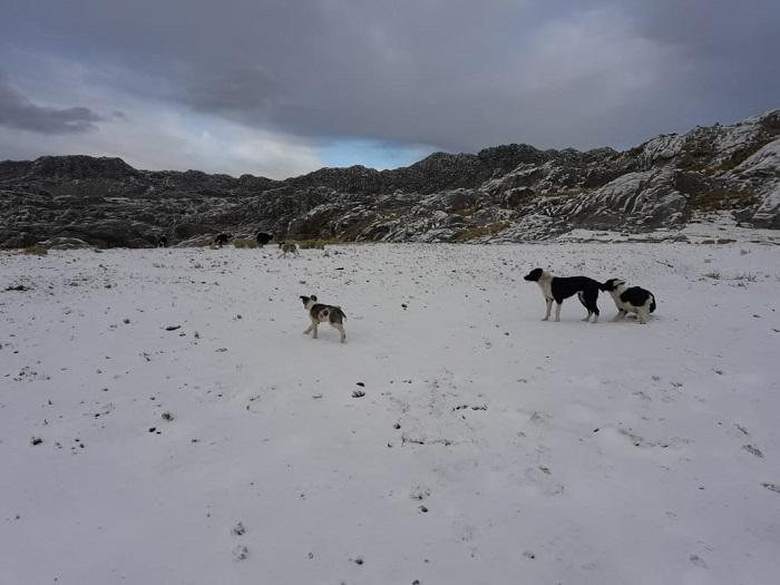 Nieve en el Champaqui 13